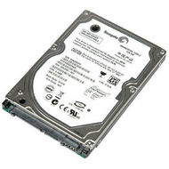 "Pevný disk do notebooku 2,5"" - HDD 320 GB SATA"